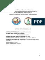 Imforme de Practica Modular 2018 TAQ.