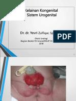 3.1.1.2 Kelainan Kongenital Sistem Urinarius.pdf