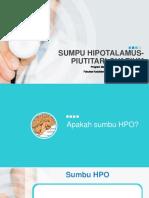 Sumbu HPO 29 agust.pptx
