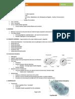Parasitic Amoebas by Dr. C. J. Castro.pdf