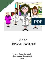 P3D 2011 dr. HAS
