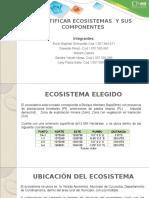 Presentacion Identificacion de Ecosistemas