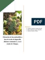 Obtención de Biocombustible a Base de Aceite de Higuerilla (Ricinus Communis L.) en El Estado de Chiapas.
