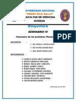 Caratula Seminario IV