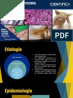 Pif - Fisiopatologia.pptx