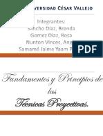 Fund. Princ. de Las Técnicas Proyectivas