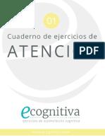 01 Atencion Ecognitiva