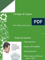 citologadeesputo-130630192824-phpapp02