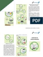 Triptico Control de Derrames.pdf
