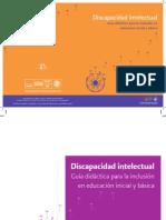 2discapacidad_intelectual.pdf