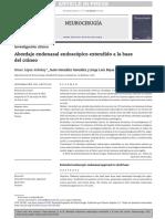 5 Abordaje Endonasal Endoscopico Extendido a la Base del Craneo.pdf