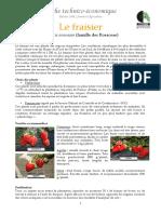 Fraisier.pdf