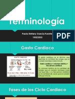 Terminologia .pptx