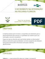 AULA 17_A IMPORTANCIA DO DESBASTE NA ILPF.pdf