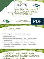 AULA 22_MODELOS RECUPERACAO FLUVIAL.pdf