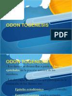 odontognesis-121021065025-phpapp02.pdf