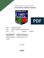 Informe 3. Cultivos y Siembras de Los m.o