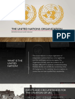The United Nations Organization