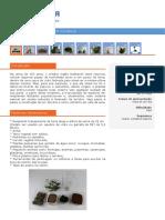 Manual de Agricultura Organica
