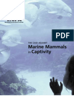 The Case Against Marine Mammals in Captivity