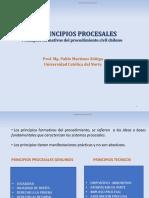 Principios_procesales.pptx