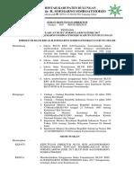 371912259-SK-Pemberlakuan-Formularium-2017.docx