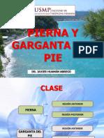 Pierna-garganta Pie