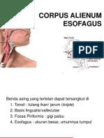 1. Ba Esofagus