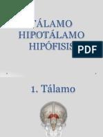 Talamo Hi Potala Moe Hip of is Is