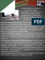 Pendon Modelo 3.pptx