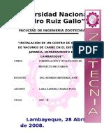 308462148-Vacunos-de-Engorde-Jayancaproyecto-de-Charly-Pool-Lara-Zamora.doc
