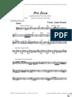 Pro Zeca (Victor Assis Brasil)