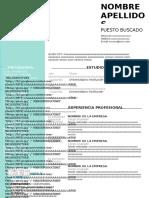 curriculum-vitae-.doc