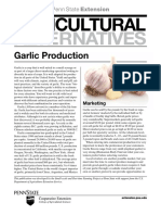 Garlic Production