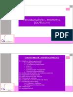 PROGRAMACION - PROPUESTA CAPITULO V 2018.pdf