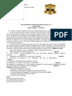 Subiect Test Clasa 5 2013