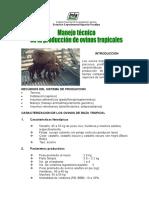 Manejo Técnico en la Produccion de Ovinos Tropicales