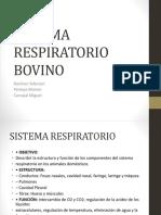 SISTEMA RESPIRATORIO BOVINO.pptx