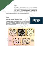 teoria FUNDICION..pdf