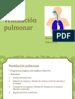 ventilacinpulmonar-140203163222-phpapp02