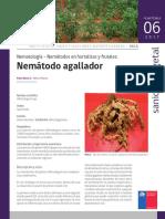 Ficha 06 Nematodo agallador.pdf