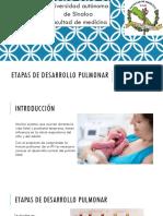 Etapas de desarrollo pulmonar.pptx