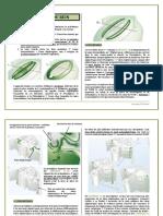 Fiche Embryologie Du Rein - Copie