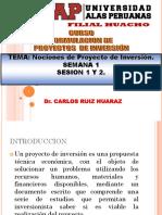 1 Nociones Proyectos de Inversio Niveles y Partes (1)