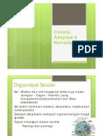 caridokumen.com_cedera-adaptasi-amp-kematian-sel-.pdf