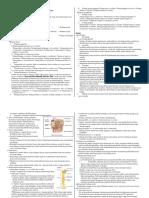 211955911-Sistem-Muskuloskeletal-Dan-Saraf.docx