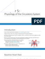 Physiolab Circulatory