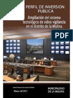 PERFIL DE INVERSION PUBLICA.pdf