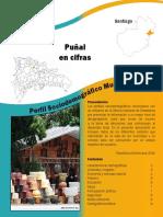 Perfil_punal