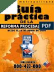 Guia practica proceso penal.pdf